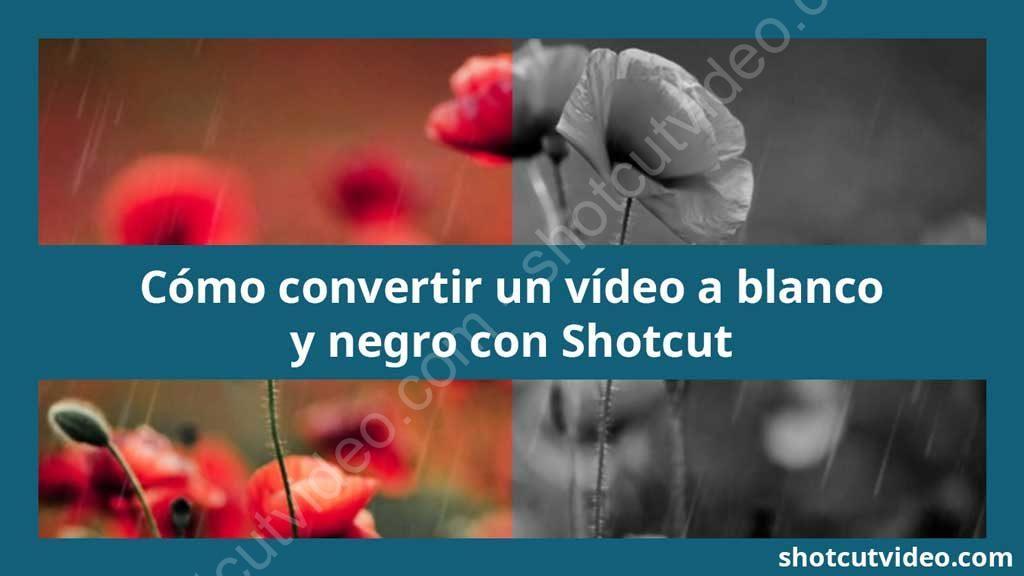 Tutorial convertir vídeo a blanco y negro