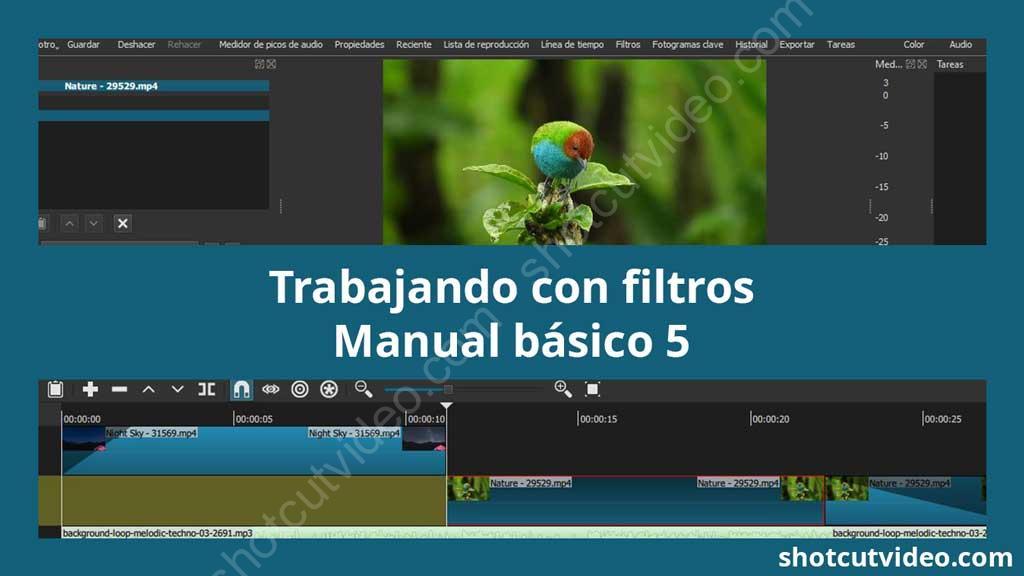 Trabajando con filtros - manual básico de Shotcut 5